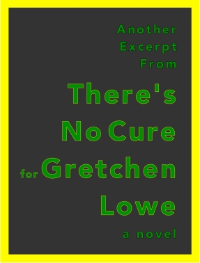 Another Excerpt from: There's No Cure for Gretchen Lowe, a novel