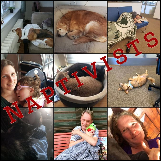 Top left-right: A basset hound sleeping; a golden retriever napping; a white woman napping on a couch in an office; middle row left-right: a white woman holding a small sleeping child; 2 cats curled in a basket; a little dog napping belly-up on an office floor; bottom row left-right: a woman napping with a cat; a white guy cuddling a blanket and stuffed frog; a lounging white woman